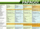 Papago-P0-P1W-P2-P3-Comparison.jpg