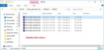 Papago GoSafe GS200-US Folder Files.jpg