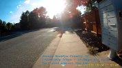 2016_0904_175034_008A.MP4_20160904_215323.813-7s.jpg