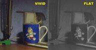 VIVID-FLAT.jpg