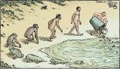 Evolution....jpg