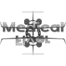 MedicalFlyer